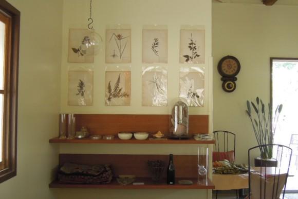 植物標本,陳列棚,古時計,アンティーク時計,振り子時計,gachirin,飯能,名栗,カフェ,喫茶,cafe,入り口,アンティーク,平屋,フラットハウス,観葉植物,シャビー,ガーデニング