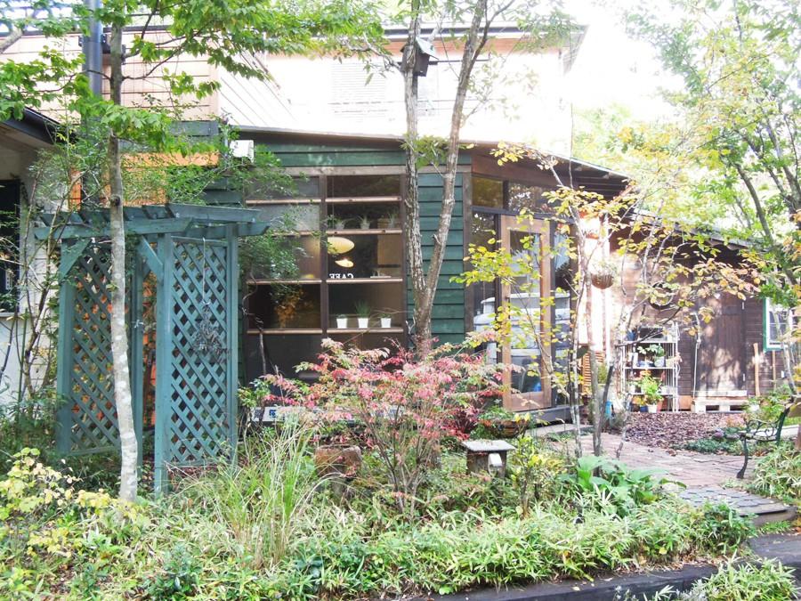 日高,カフェ,埼玉,ハチス,Hachisu