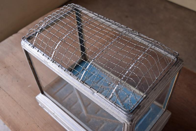 蓋は載せるだけ,アンティーク,水槽,虫籠,ブリキ,ガラス,古道具,多肉植物ケース