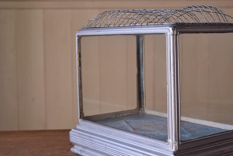きれいなガラス面,アンティーク,水槽,虫籠,ブリキ,ガラス,古道具,多肉植物ケース