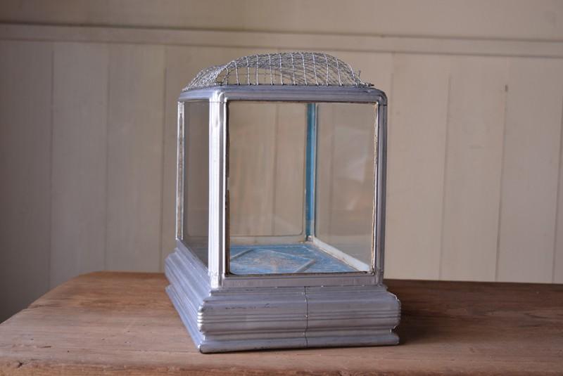 側面,アンティーク,水槽,虫籠,ブリキ,ガラス,古道具,多肉植物ケース