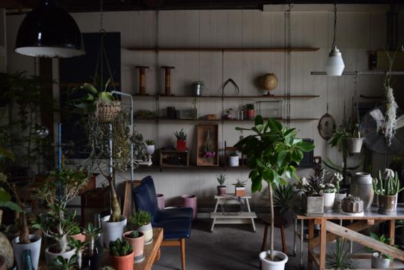 植物は入間にあるお花屋Blumen Hütteさんに、またドリンクは飯能のhachisuさんに協力いただきました。