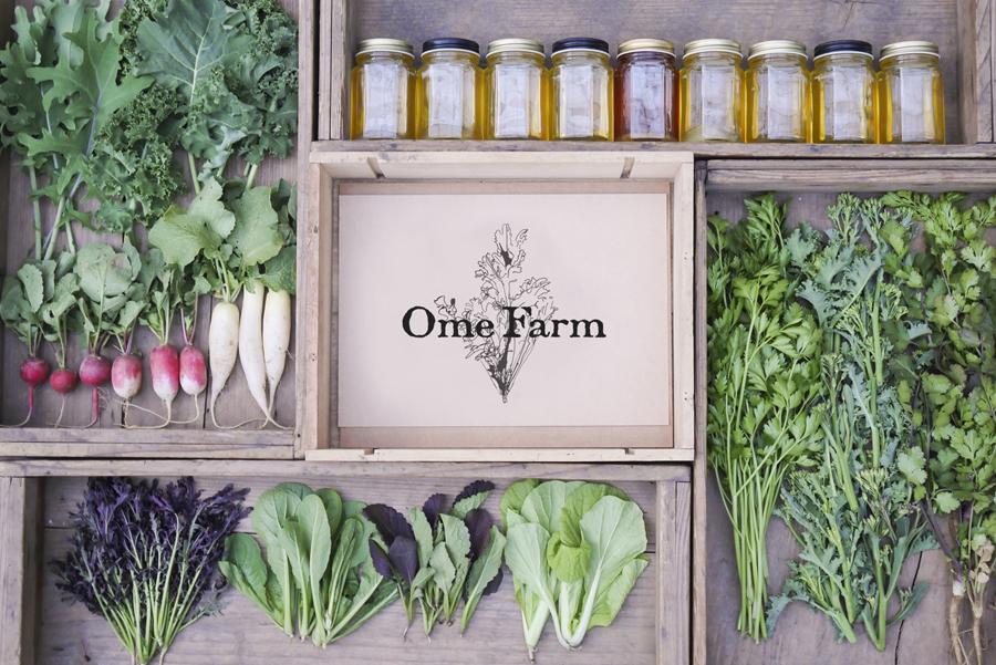 東京都青梅市にて、西洋野菜から伝統野菜まで、農薬や化学肥料を一切使用せず、自然の力と知恵を最大限に生かして栽培するOme Farm。