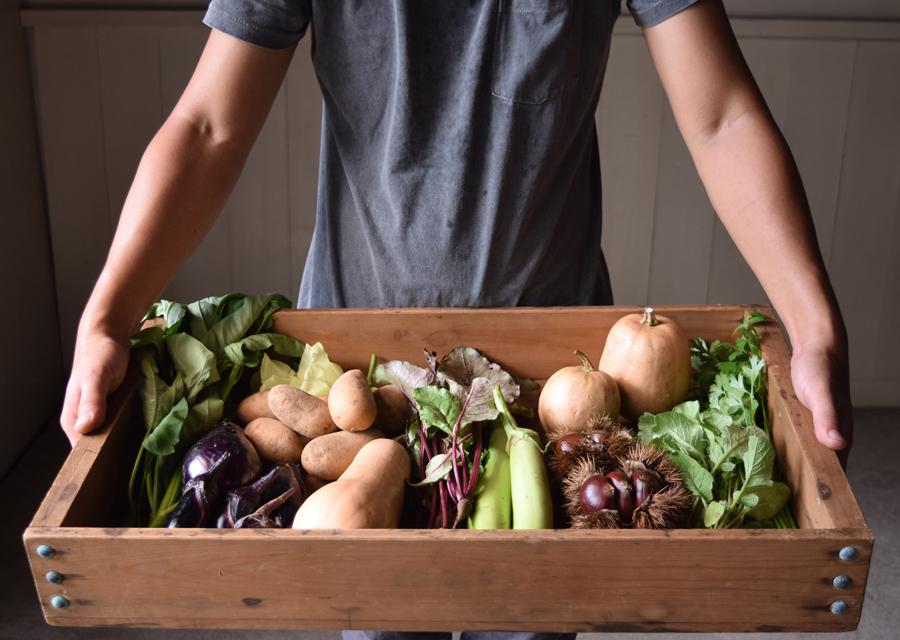 環境に優しい土づくりから始まる健康な土壌で手間隙かけて育てられた野菜は、野菜本来の風味と甘みが特徴。