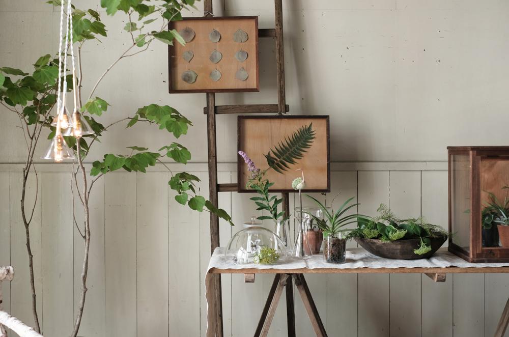 6月21日(金)からREFACTORY antiquesのアイテムとSeedingの植物と併せたPOP UPフェアを開催させていただきます。