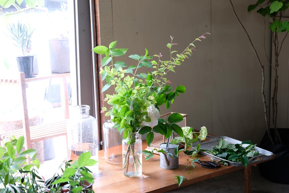 澄んだ水に植物を挿す、そんなちょっとした動作が、そのまま暮らしに華と潤いを与えてくれる時間をご提案します。