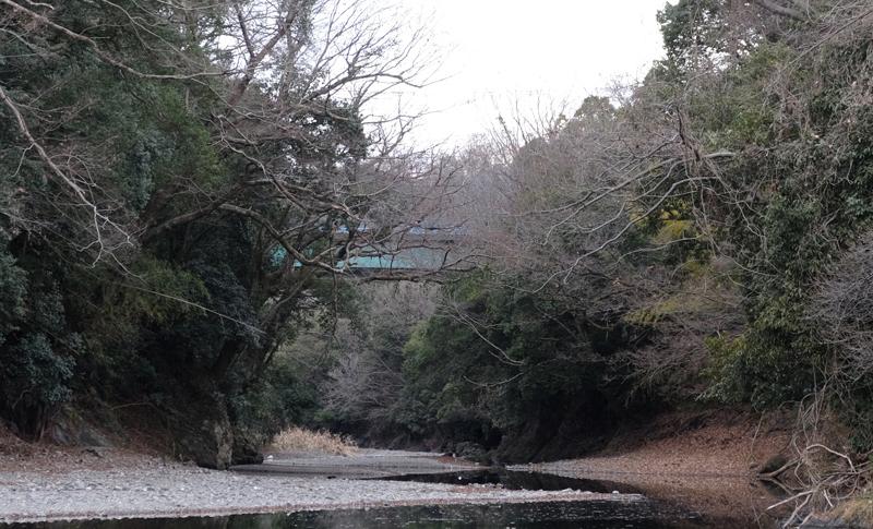 飯能河原から見た岩根橋、木々で埋もれる