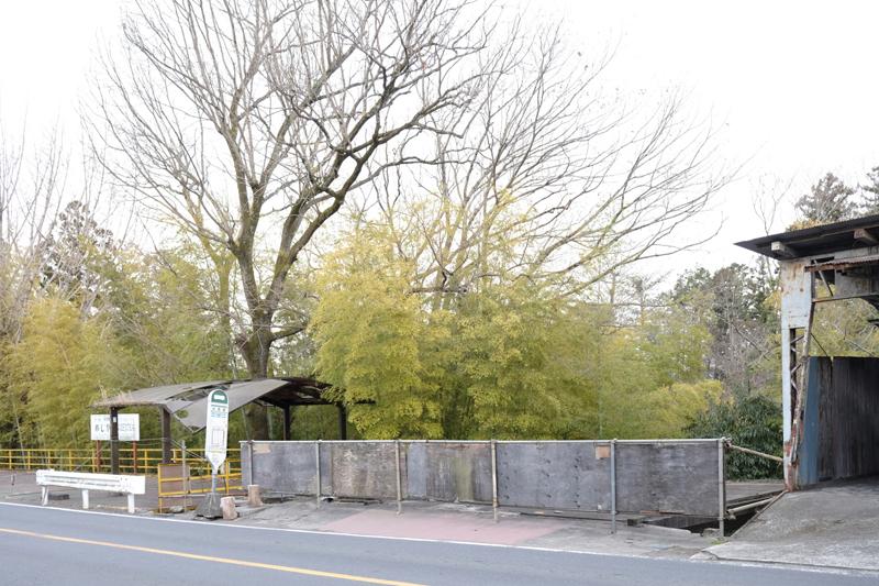 竹藪と岩根橋バス停。名栗街道、バス通り